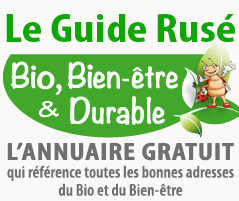 Site name is Le Guide Rusé du bio, Bien-être & Durable